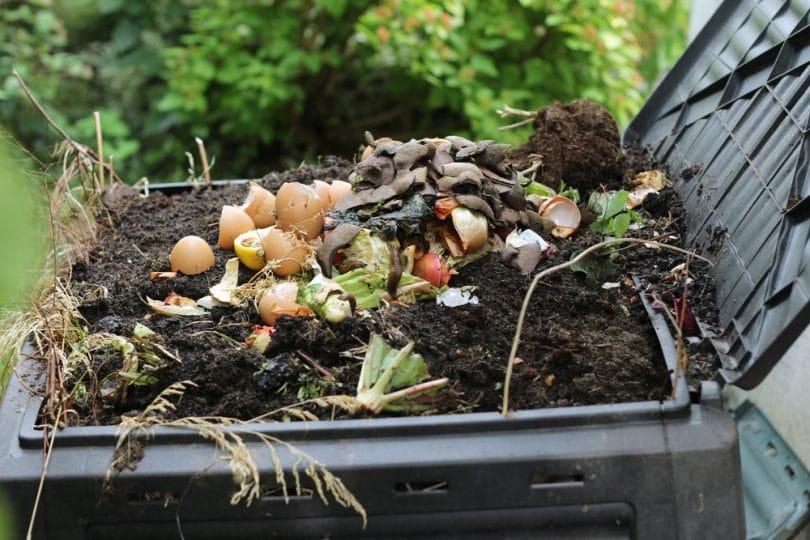 foodstuffs in compost heap