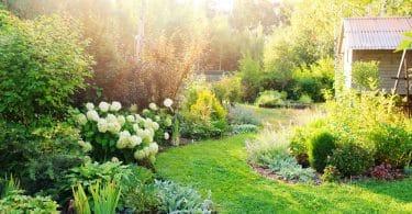 beautiful garden with planted garden edging
