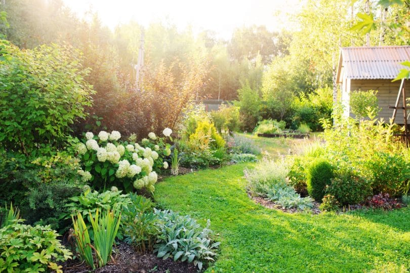 beautiful garden with planted garden edging