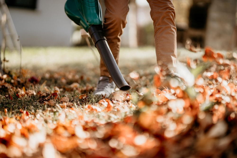 man blowing leaves around garden