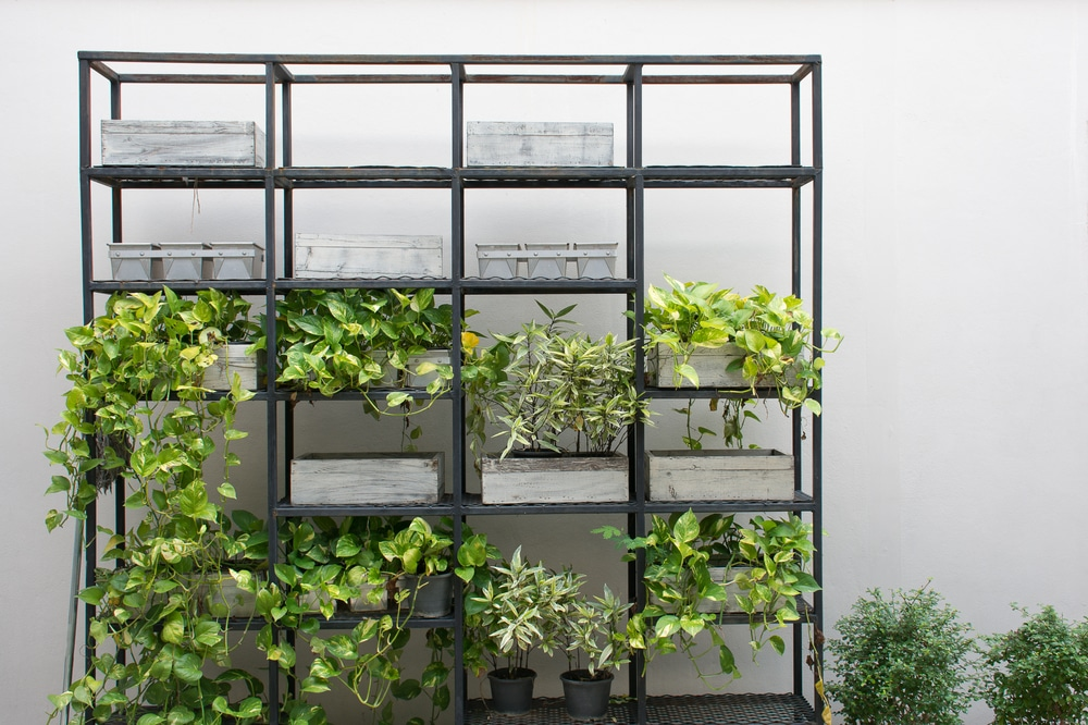 Garden shelving with metal frame and wooden planters