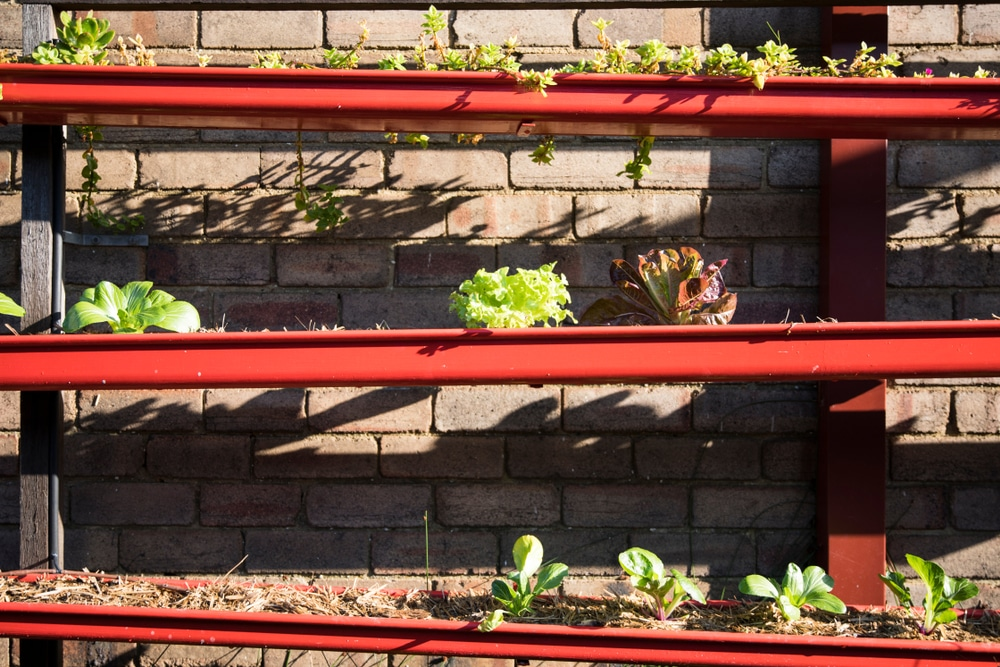 Old red gutters arranged at slight angles