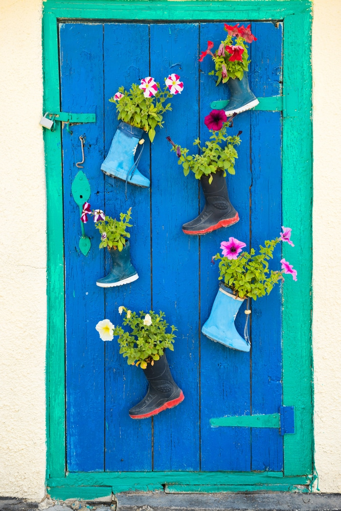 Plants grown in recycled wellies