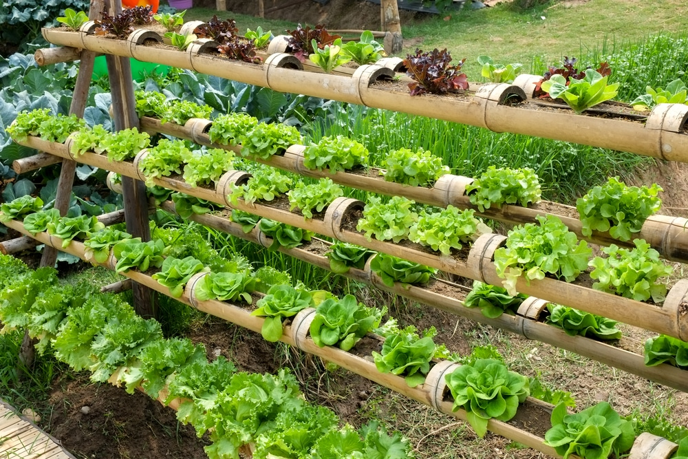 18 Smart Vertical Garden Ideas For Small Spaces | UpGardener