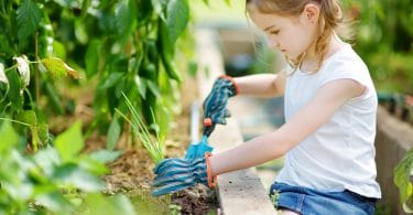 young girl digging with plastic gardening shovel