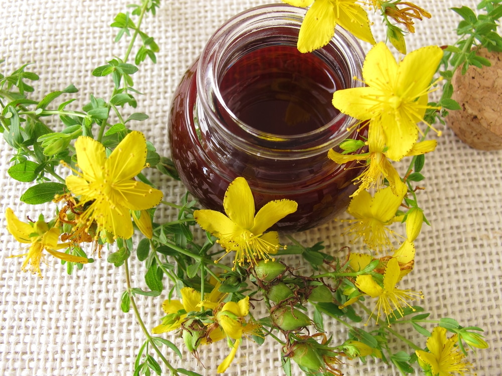 St. John's Wort oil in a glass container