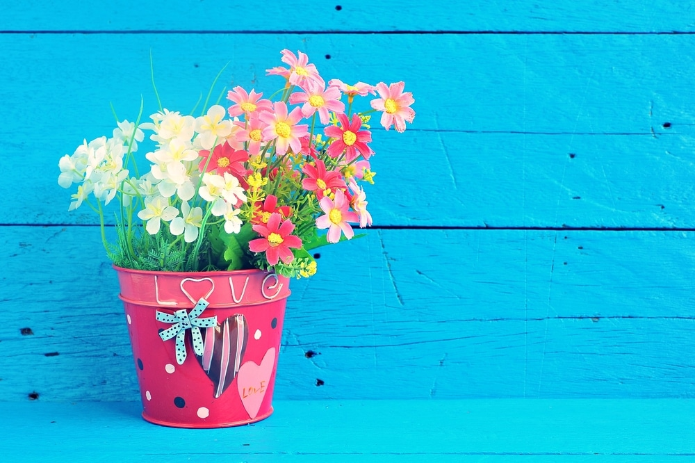 A beautiful pink painted plant pot with white & pink flowers