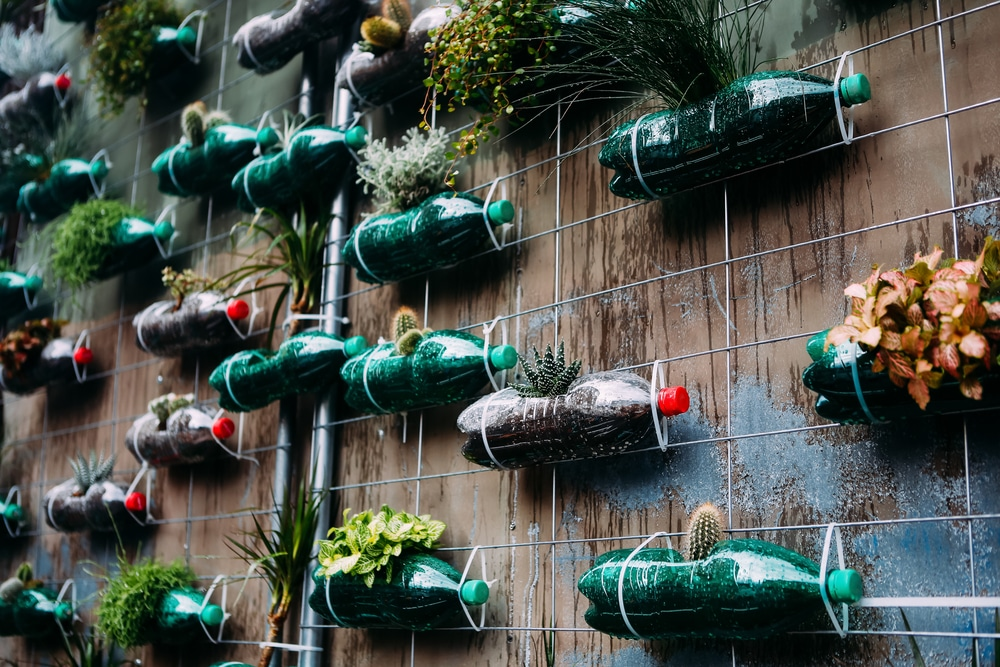 Plastic bottles used in a vertical garden