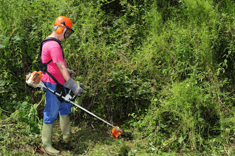 man using brush cutter on thick growth