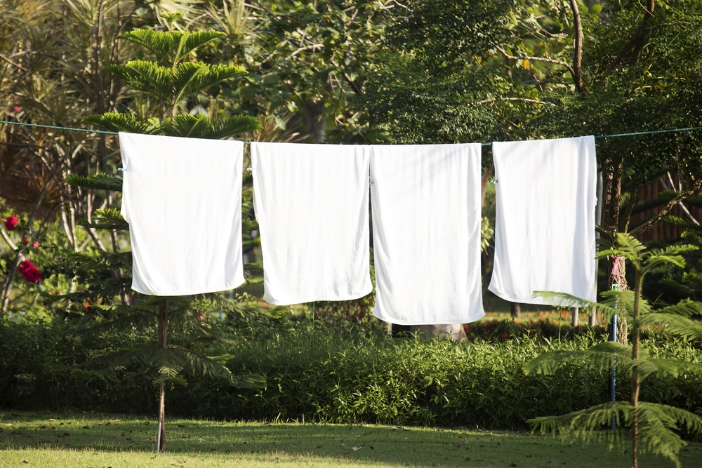 white clothing hung on a washing line