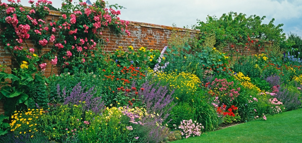 A colourful flower border of a country house in Solihull