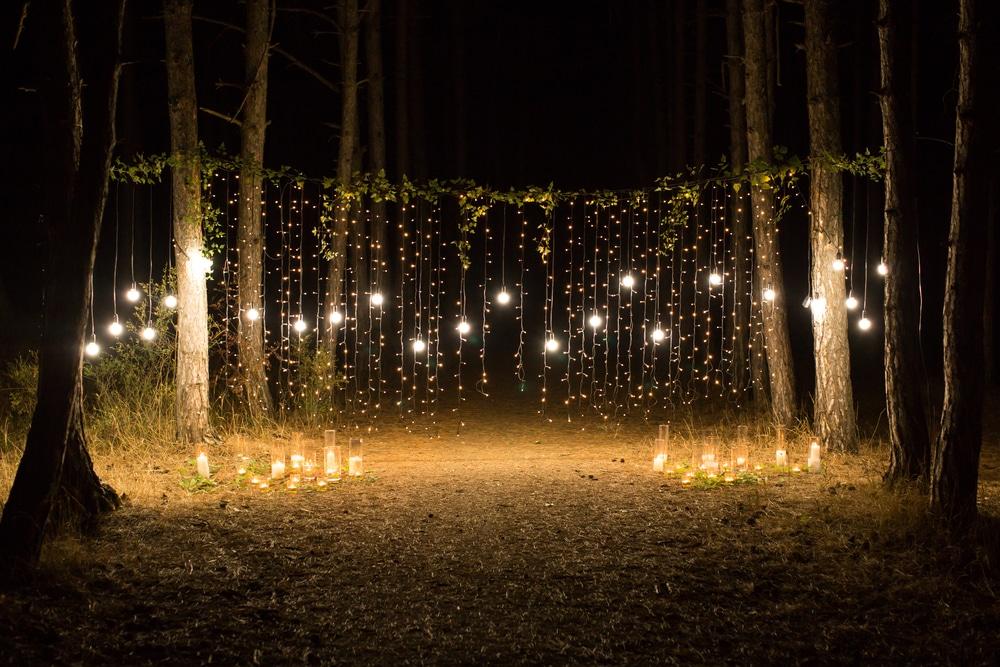 waterfall lights hung vertically between tree trunks