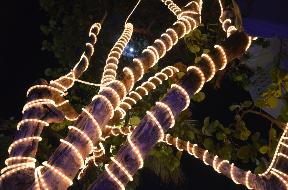LED strip flex lights around tree branches