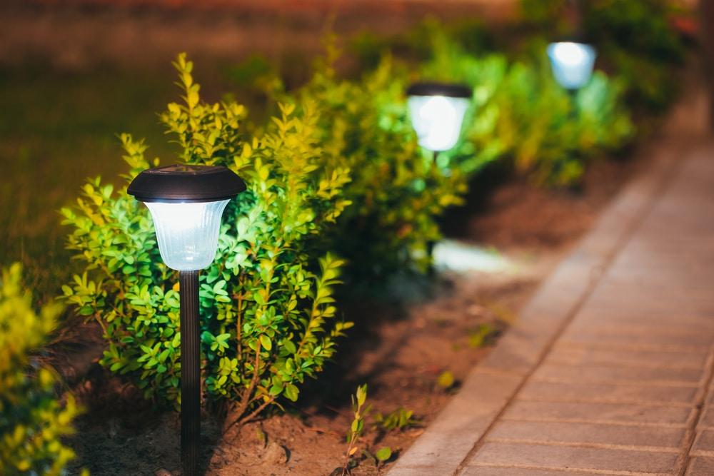 solar-powered garden border lighting
