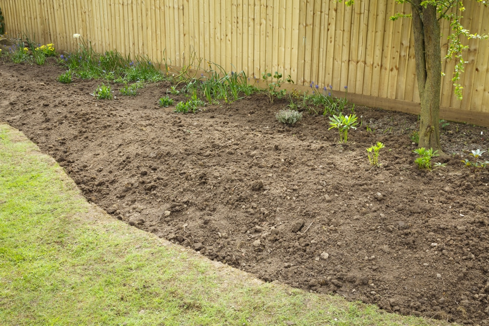 A flowerbed prepared for planting