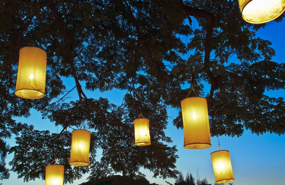 oriental paper lantern lighting hung from tree