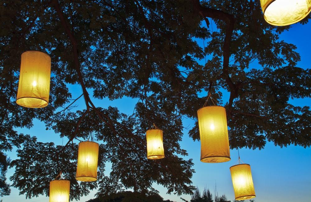 oriental paper lantern lighting hung from tree