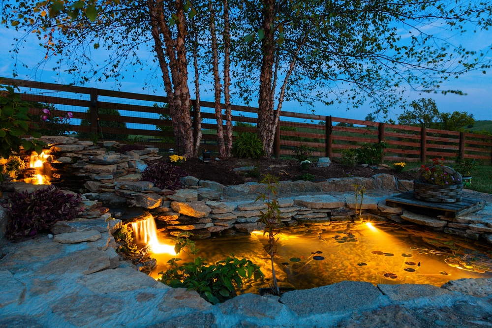 illuminated pond in late evening