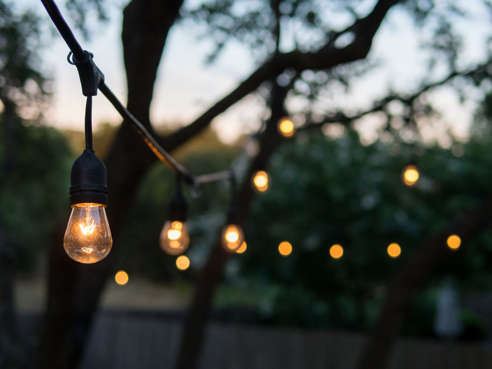 Festoon lights hanging from a tree