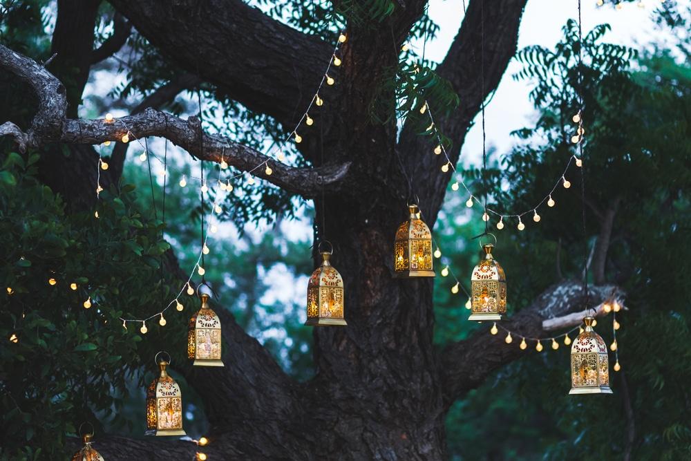 Lantern lights draped across a tree