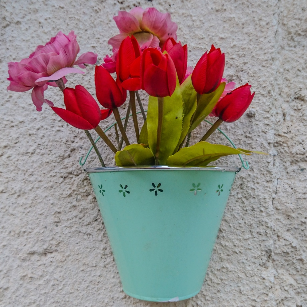red and pink tulips in green basket fixed to a white wall
