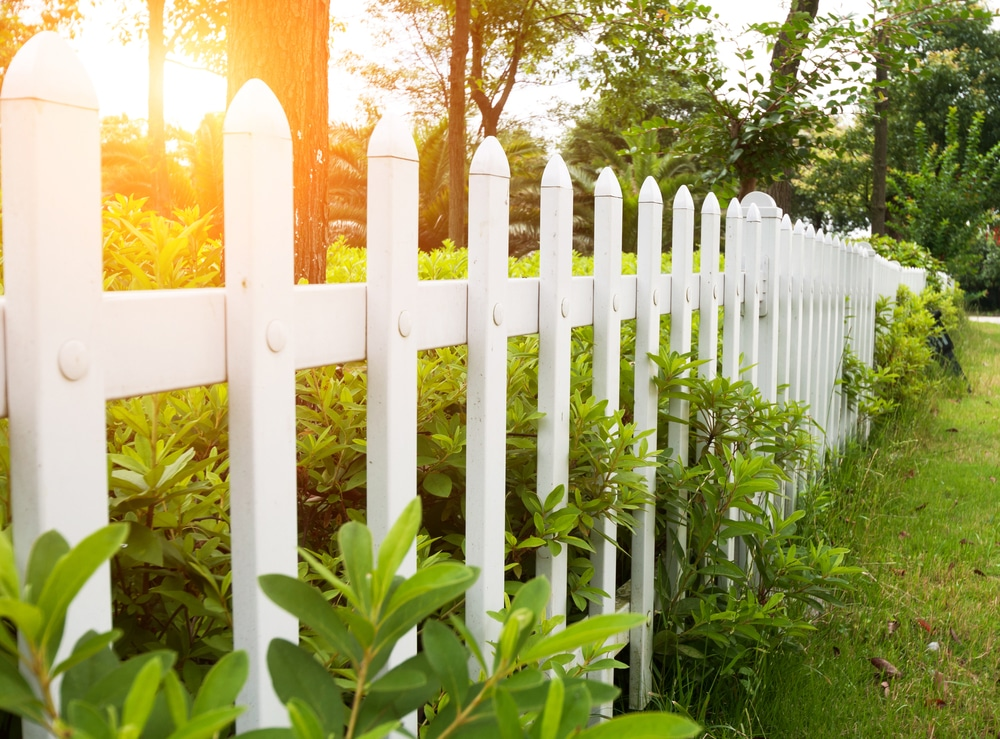 fence painted in solid white with green border