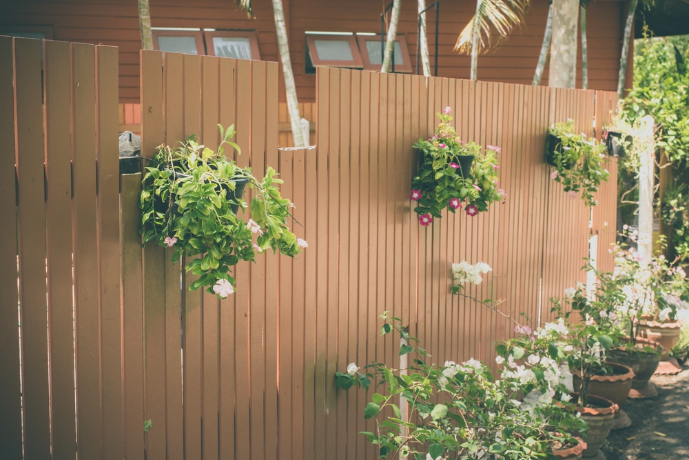 hanging baskets fixed on to a fence