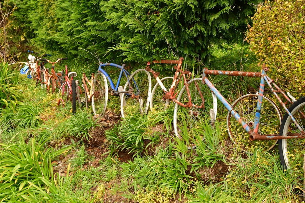 garden border using old rusted bicycles