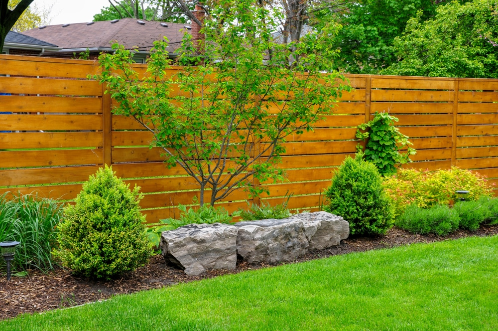 low maintenance asian themed garden with timber fence