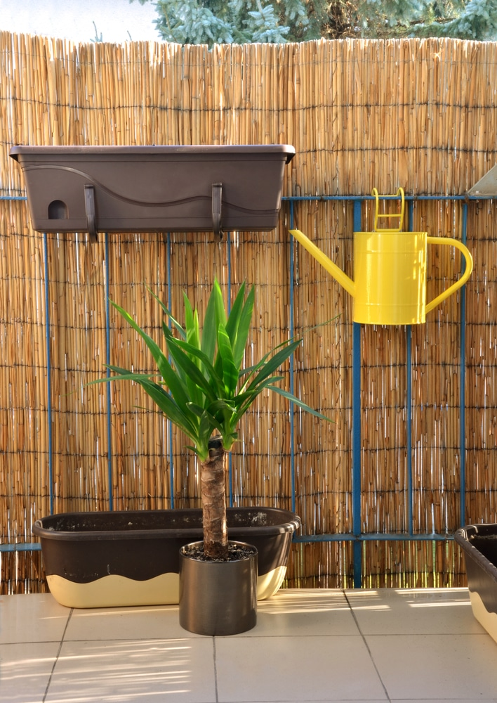 bamboo screens with planting pot and watering can attached