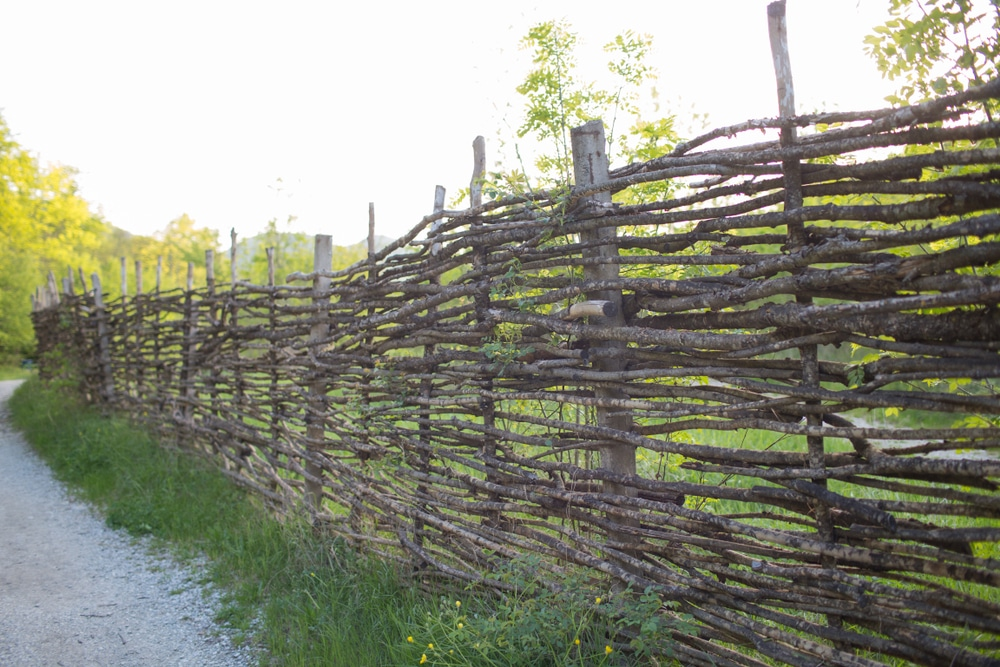a wicker fence in the countryside