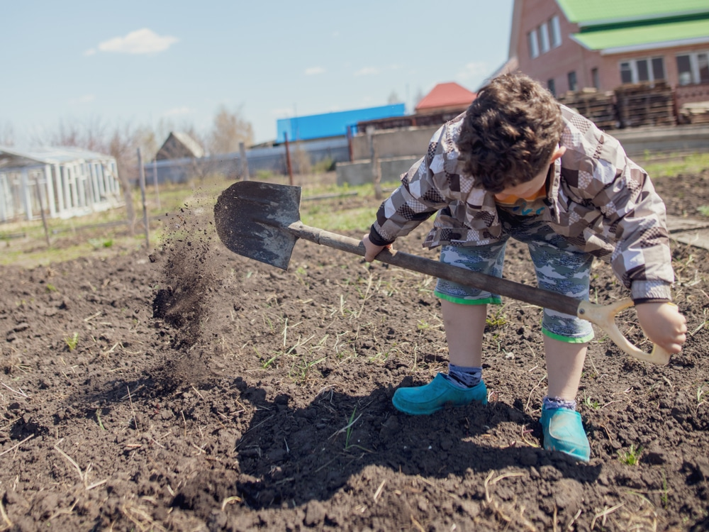 young boy digging garden soil