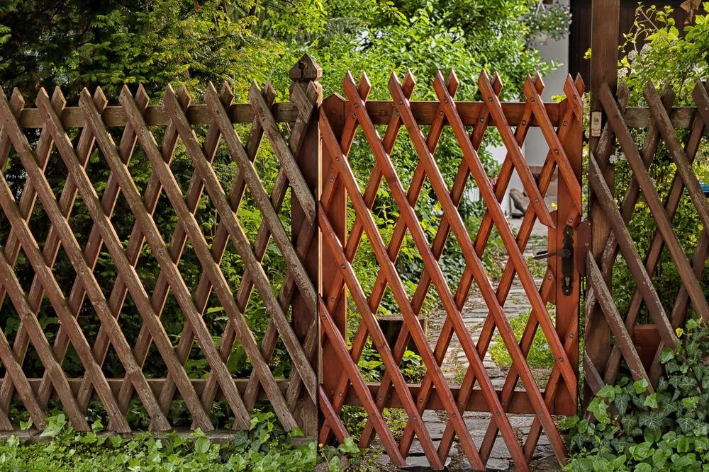 wooden lattice fencing in a garden