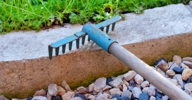 rake lying in garden next to gravel