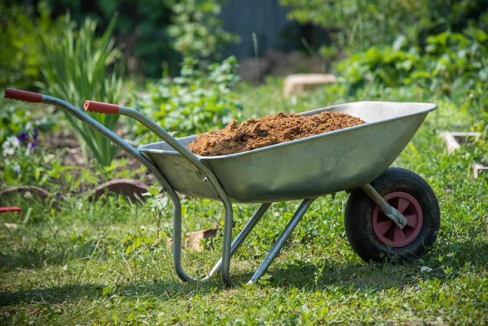 wheelbarrow filled with soil in garden