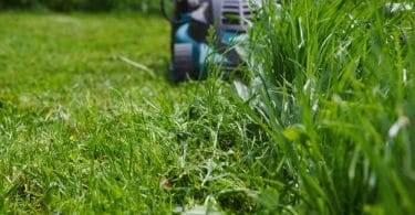 lawn mower cutting long grass