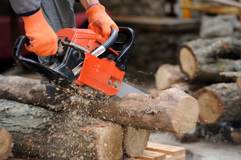 cutting through a log with an electric chainsaw