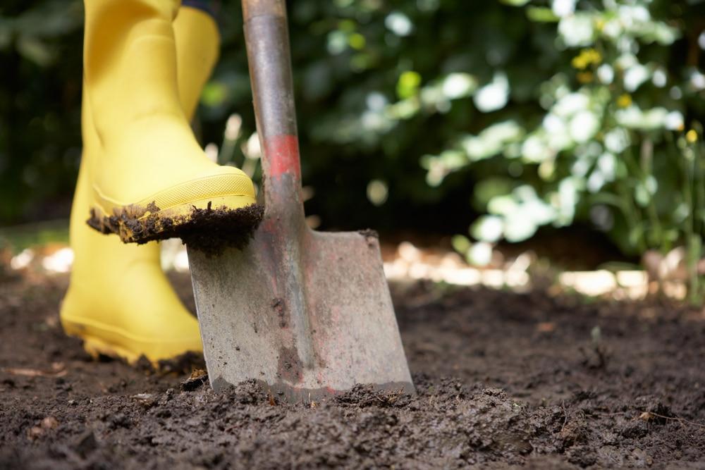 Spear /& Jackson Kew Gardens 1180SYDKEW Carbon Steel Treaded Digging Spade