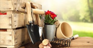 gardening tools sat next to a wooden storage box