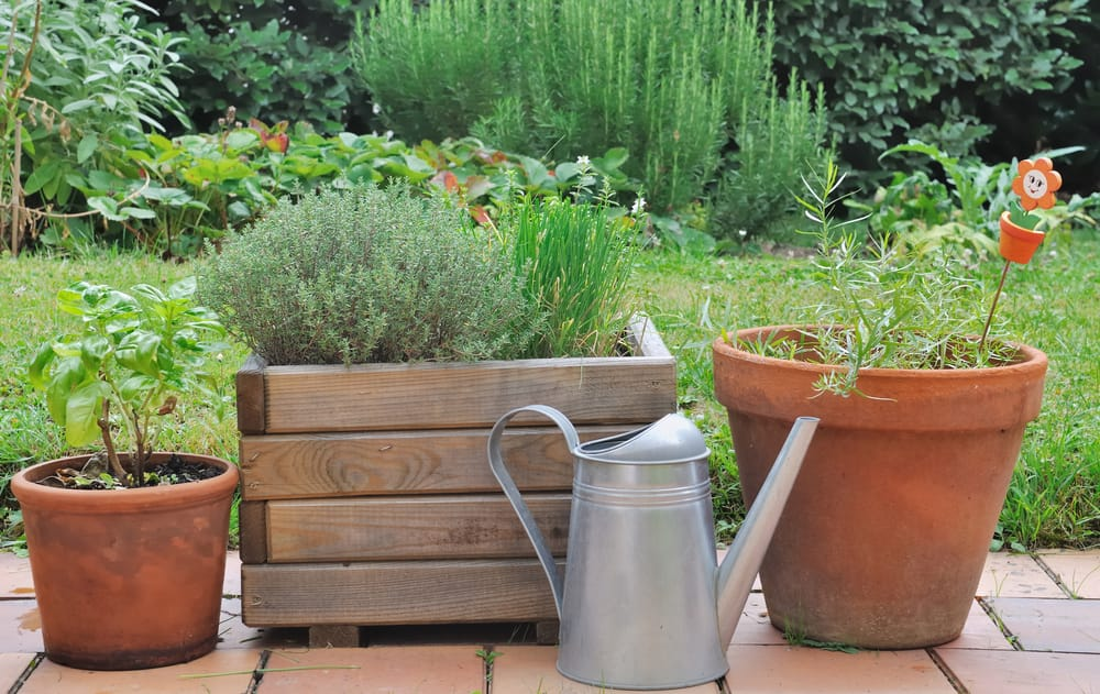 a planter alongside two plant pots and a watering can