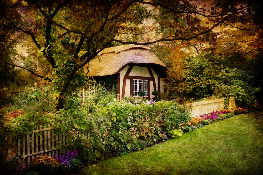 an English cottage in the woods
