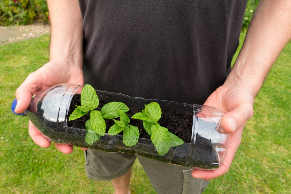 man holding a plastic bottle cut out and used to grow seedlings