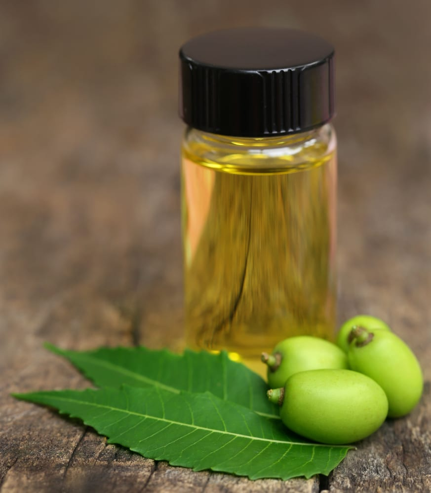 Medicinal neem oil in a plastic bottle