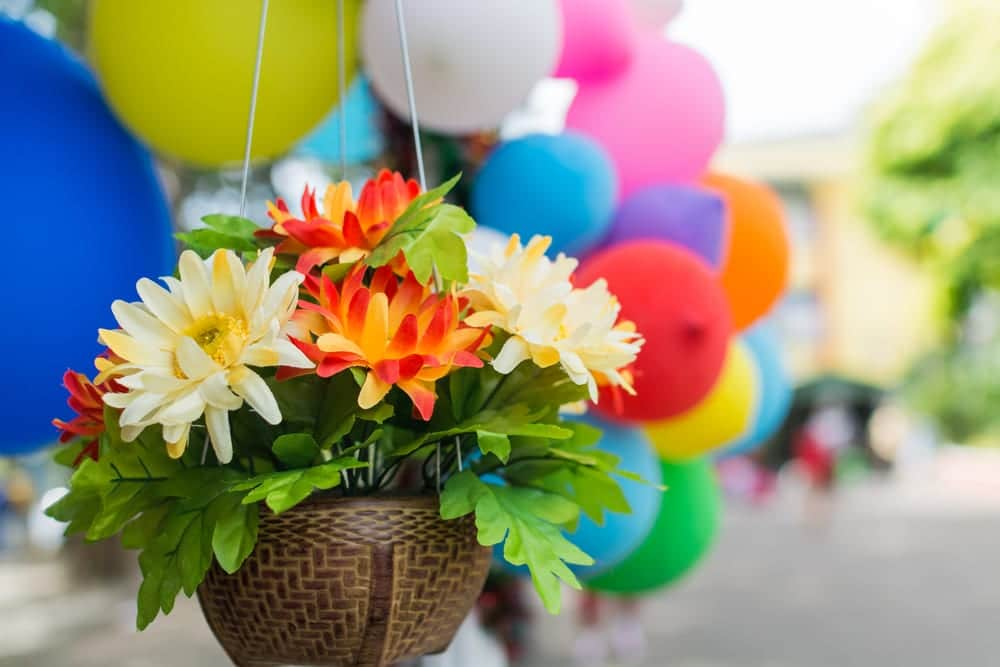 artificial flowers hanging in a basket with balloons in background