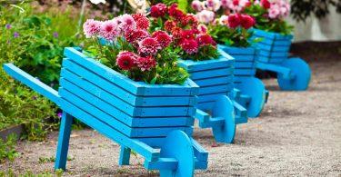 wooden wheelbarrow planters painted bright blue
