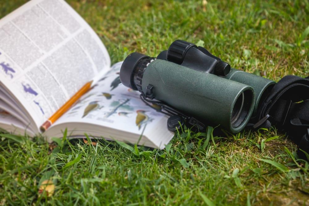 Binoculars and a bird guide on grass surface