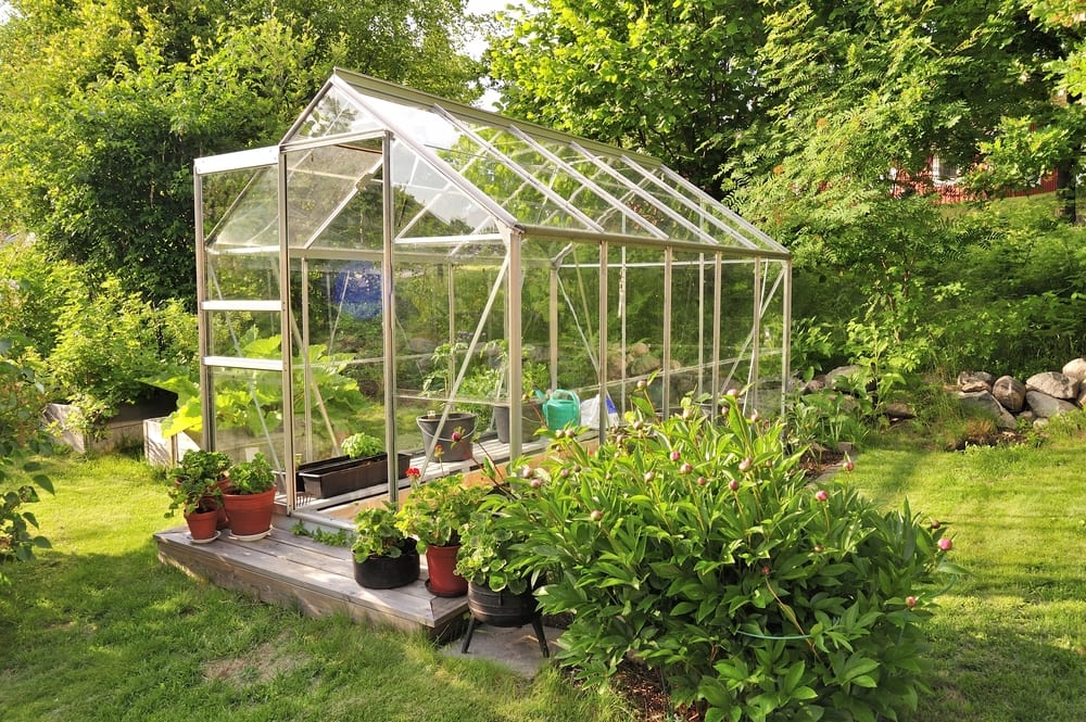 greenhouse in centre of a garden with beautiful plants