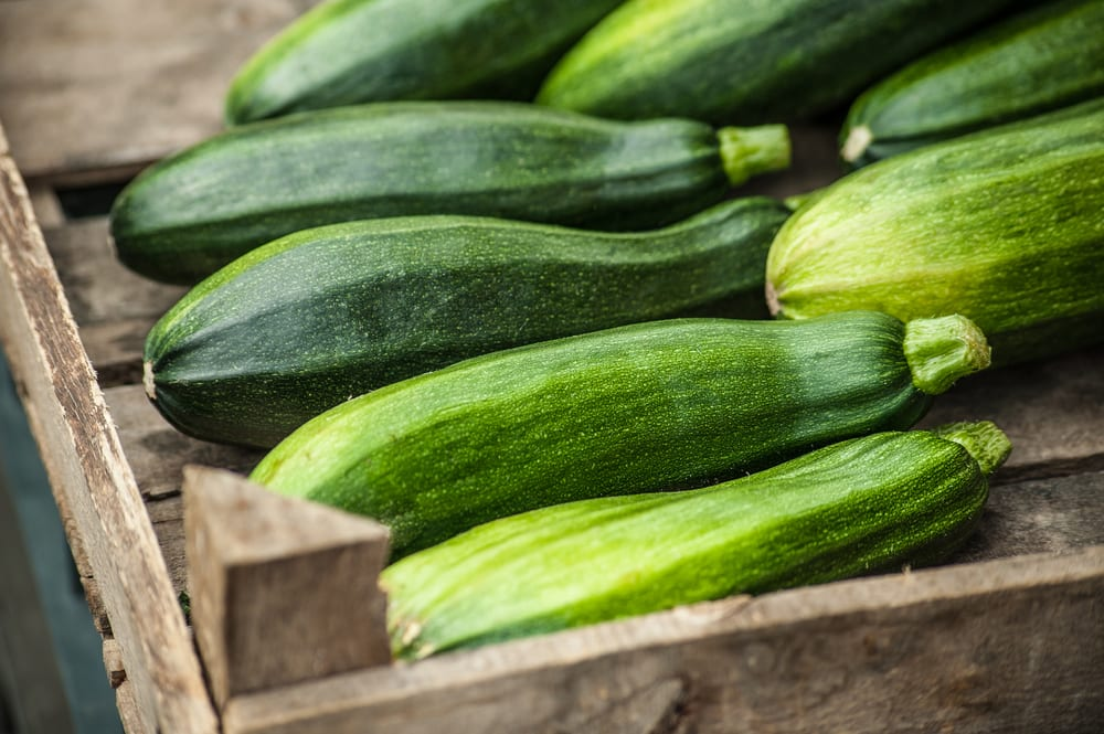 Fresh healthy green zucchini courgettes