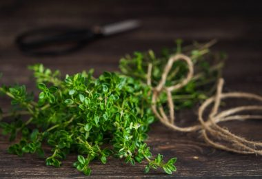 thyme sat on table with string and scissors