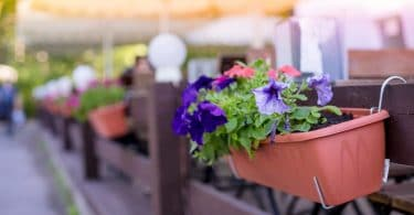 a fence hanging planter with blooming petunia flowers